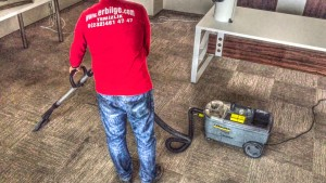 zemin halıflex, yıkama, yatak ve yorgan temizliği