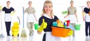 izmir ev temizliği yapan bayan eleman